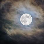Beneficios de cortar el cabello en luna llena - El Círculo de la Belleza