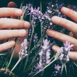 ¿Qué es la aromaterapia? - El Círculo de la Belleza