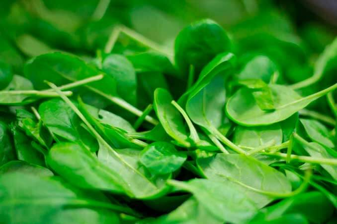Las espinacas se encuentran entre los mejores alimentos antienvejecimiento